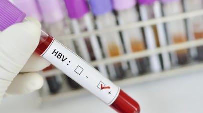 Hépatite B: vers un vaccin à base de farine de maïs?