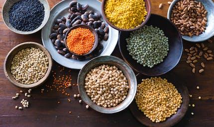 Haricots, lentilles, fèves, pois: les bienfaits des légumineuses