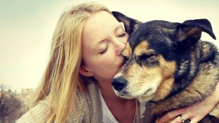 Les animaux de compagnie et les Français: c'est le grand amour