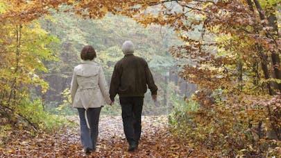 Se promener en forêt pour lutter contre la dépression