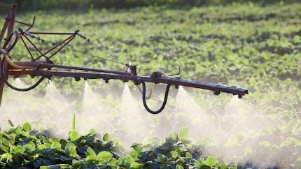 Bientôt la mesure des pesticides dans l'air?