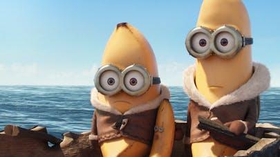5 bonnes raisons de manger des bananes
