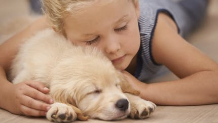Santé: ces animaux qui nous font du bien