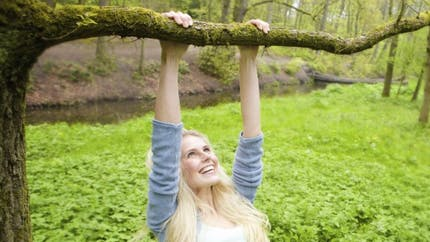 Grimper aux arbres pour améliorer notre mémoire