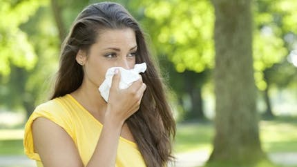 Allergies: l'ambroisie en pleine floraison dans la vallée du Rhône