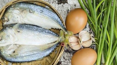 Comment manger des protéines sans viande?
