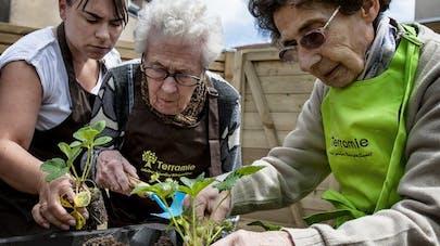 Maladie d'Alzheimer: les bienfaits des jardins de vie à visée thérapeutique