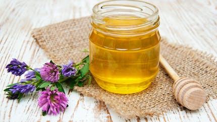 Le miel, un formidable allié pour mieux cicatriser
