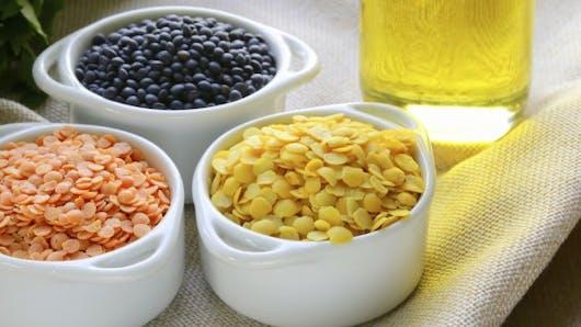 Lentilles vertes, corail, noires, blondes ... quelles différences?