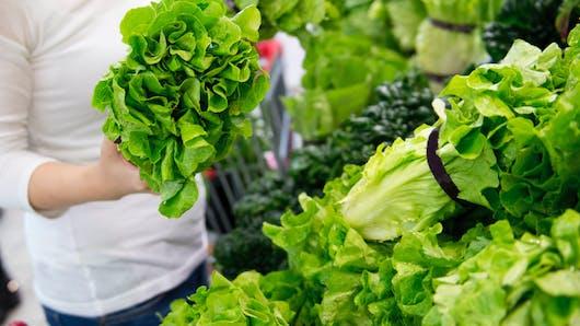 Des pesticides interdits retrouvés dans des salades