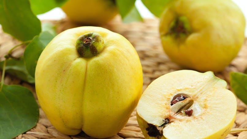 Le coing, un fruit d'automne riche en minéraux