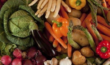 Comment conserver correctement les légumes