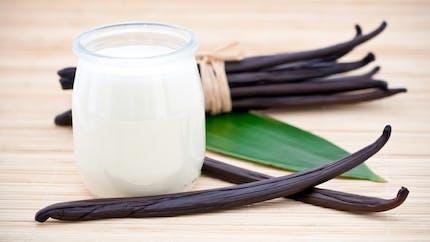 Un yaourt à la vanille, secret de la bonne humeur?
