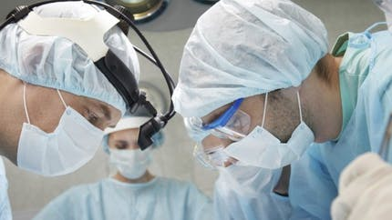 Vers un traitement contre la maladie aiguë du greffon