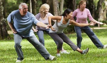 Premier dictionnaire du sport santé: quel sport pour quelle maladie?