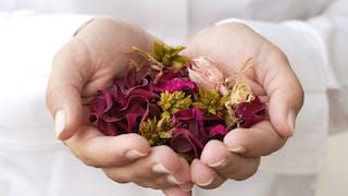 Les plantes qui soignent l'anxiété et les troubles du sommeil