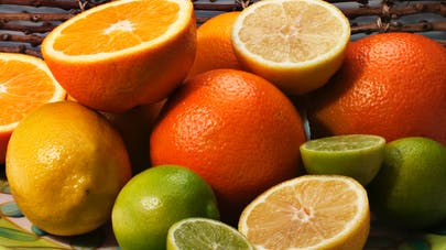 Citron, orange, pamplemousse : les 7 points forts des agrumes