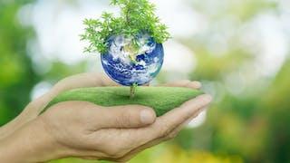 5 gestes bons pour la planète et pour sa santé