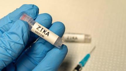 Virus Zika: le lien avec les microcéphalies est confirmé