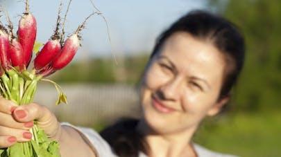 Le radis, il protège du cancer