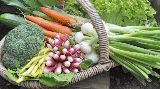 8 légumes d'avril pour faire le plein d'antioxydants