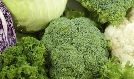 6 conseils pour faire le plein de calcium sans produits laitiers