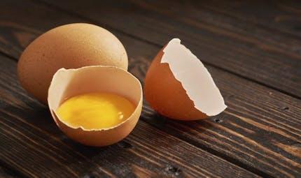 Santé: toutes les vertus des coquilles d'œufs