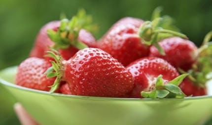 Polyphénols des fruits: utiles contre l'inflammation chronique
