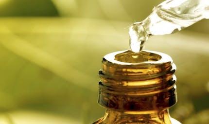 Aromathérapie: 5 huiles essentielles à garder sur son bureau