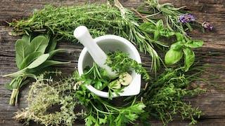Plantes aromatiques, des aliments détox qui aident à bien digérer