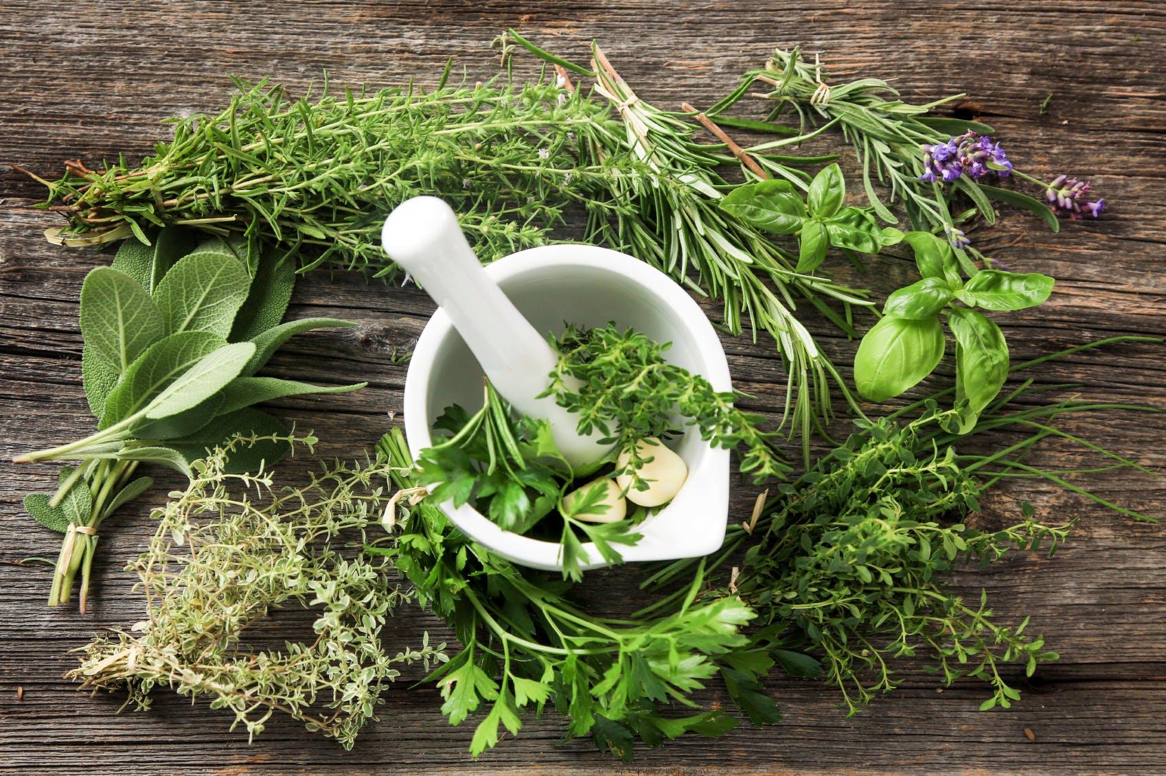 Plantes aromatiques, des aliments détox qui aident à bien digérer ...