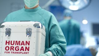 Don d'organes: comment sont attribués les greffons?