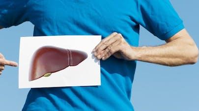 Tout ce que vous devez savoir sur votre foie