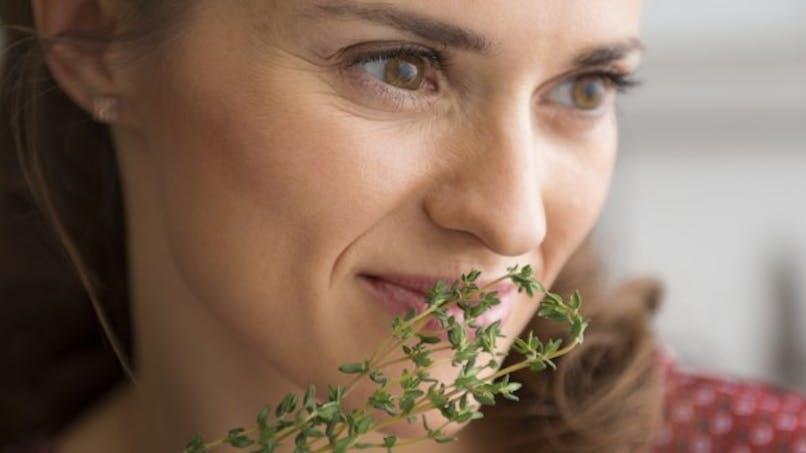 Le thym,  une plante sacrément stimulante!