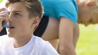 Asthme: vers un traitement génétique préventif