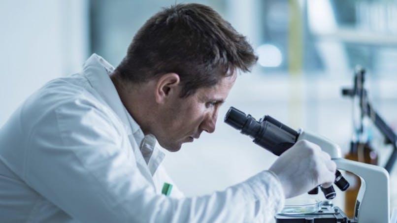 Fertilité: des chercheurs inversent le processus de ménopause