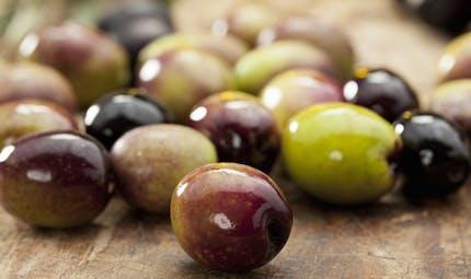 Tous les bienfaits santé des olives