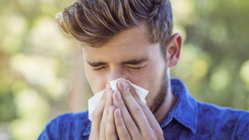 Allergie: retour du pollen d'ambroisie