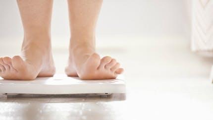 Des chercheurs identifient une protéine qui favorise la dégradation des graisses