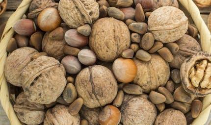 5 aliments anti-cholestérol à mettre à ses menus de rentrée
