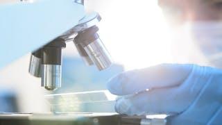 Maladie de Crohn: une nouvelle piste de traitements