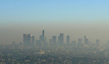 Et si la maladie d'Alzheimer était liée à la pollution de l'air?