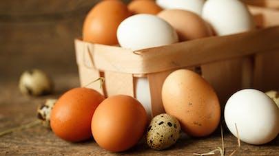 Qu'est-ce qu'un œuf bio?