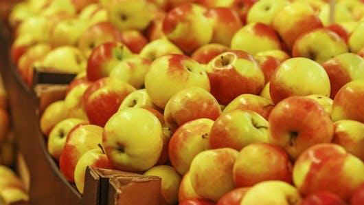 De nombreuses traces de pesticides contenues dans les fruits