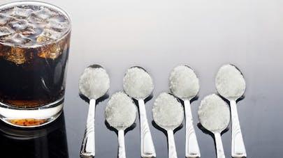 Contre l'obésité, l'OMS encourage la taxe sur les boissons sucrées