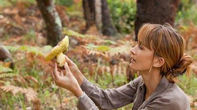 Intoxications aux champignons: 10 règles à suivre pour l'éviter