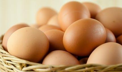Deux œufs par jour, le secret de la longévité?
