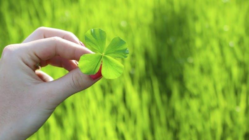 Peut-on cultiver la chance?