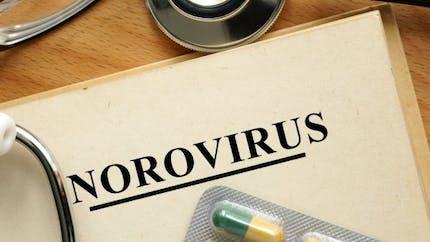 4 choses à savoir sur le norovirus, le virus de la gastro