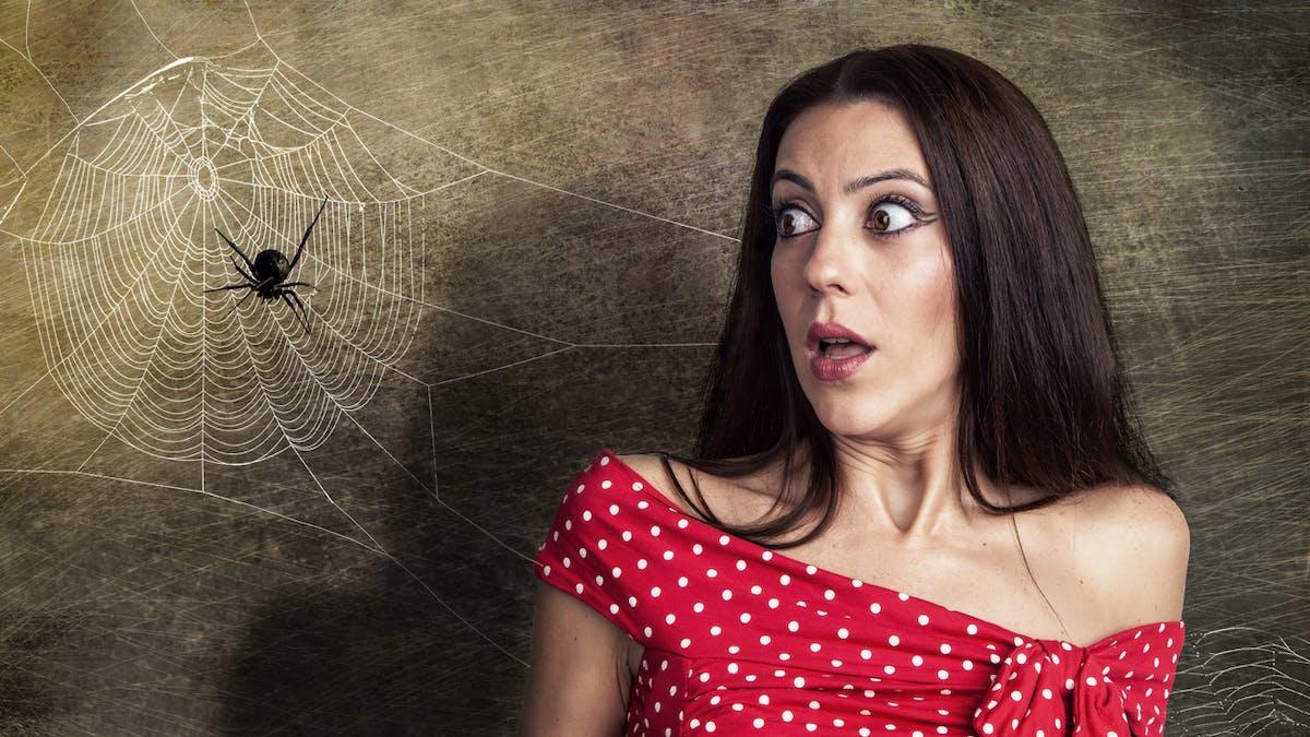 La réalité augmentée aide à lutter contre l'arachnophobie